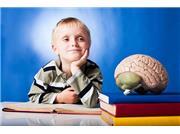 چه غذاهایی روی هوش کودکان تاثیر دارد